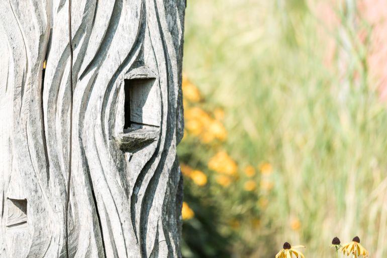 Vogelunterschlupf beim Biotop vor dem Gemeindehaus